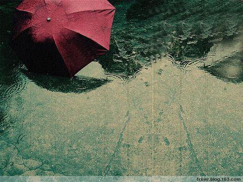 雨の降る日